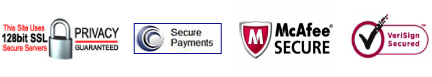 100% Secure Online Payments