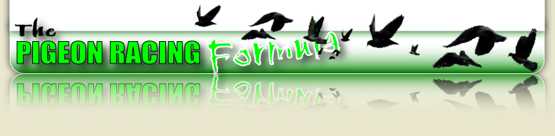 The Pigeon Racing Formula Footer