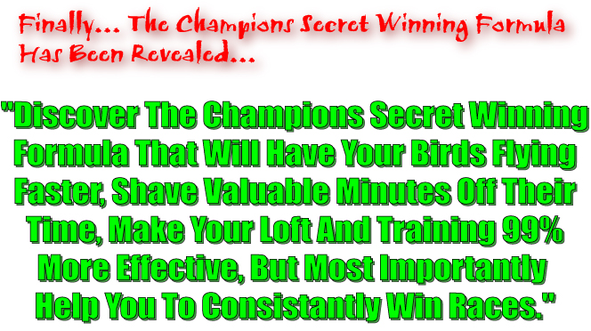 Learn the champion pigeon fanciers secret winning pigeon racing formula